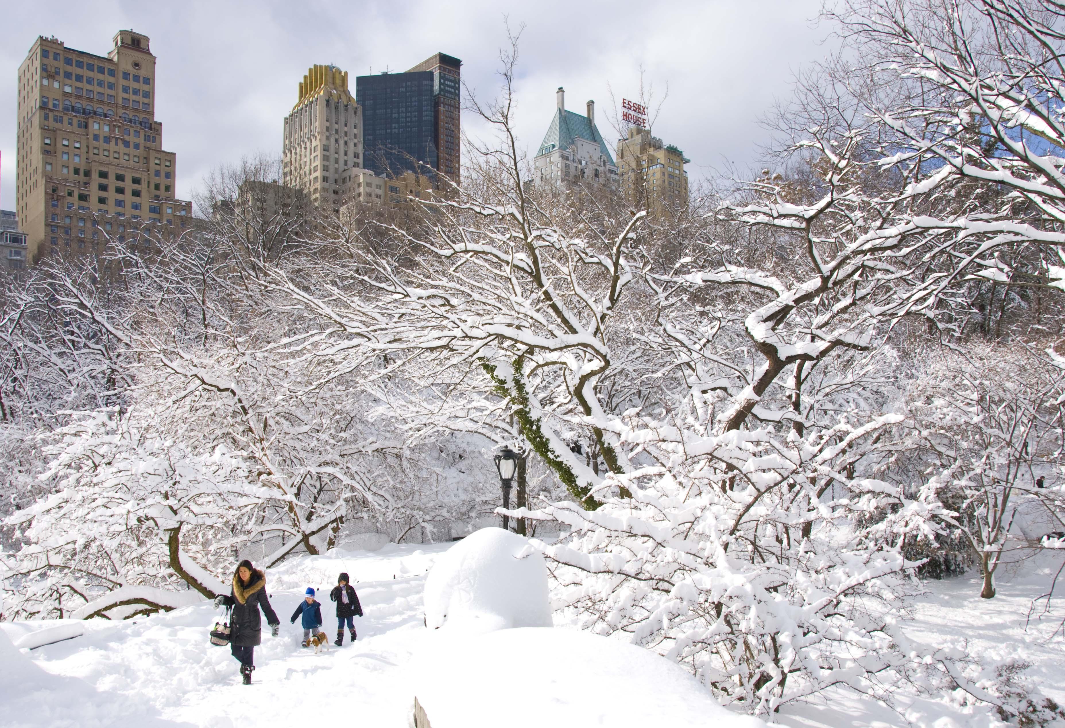 Все картинки зимы в городе сальса